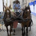 Charrete - Castelo de Obidos