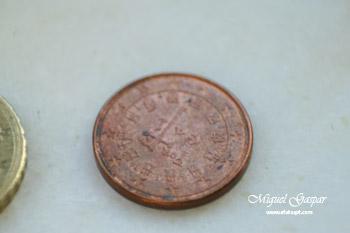 Macro - Moeda de 10 cêntimos