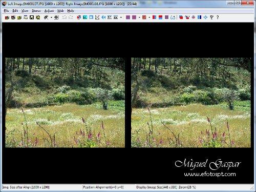 Fotografia 3D - Stereophoto Maker - Ambiente