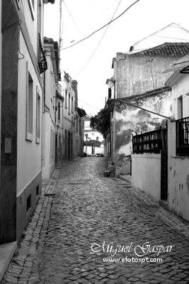 Grayscale - Ruas de azambuja - edição a preto e branco