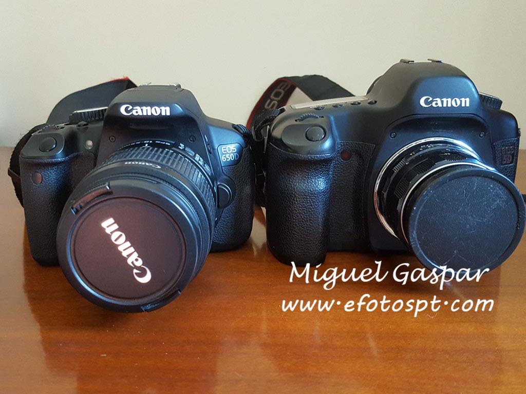 Canon 650D e Canon 5D